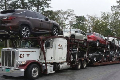 truck carrying multiple variants of cars